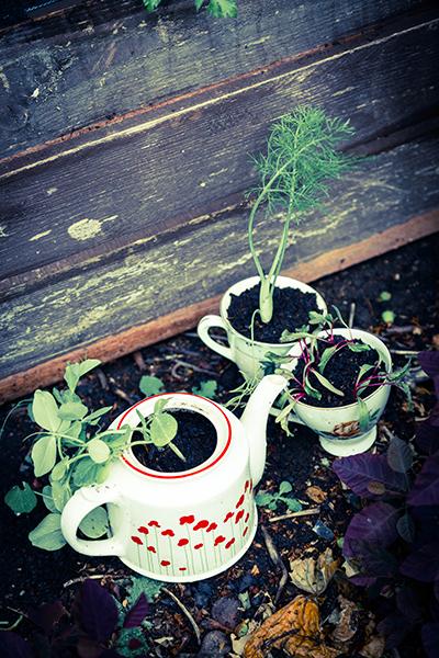 tea pot 2